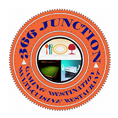 366 Junction : Vijay Nagar, Vijay Nagar,New Delhi logo