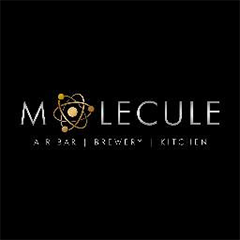 Molecule Air Bar : Sector 29, Sector 29, Gurgaon logo