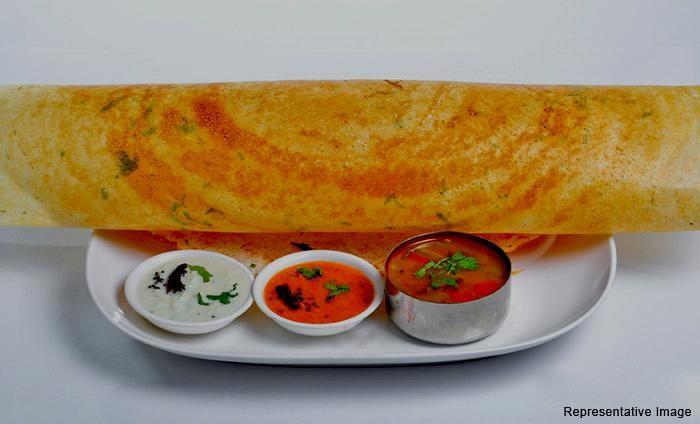 Shree Nandhini Cafe : Vijay Nagar, Vijay Nagar,New Delhi cover pic