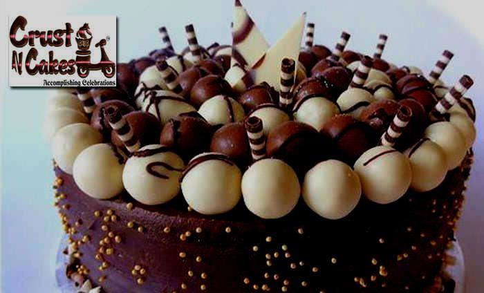 Crust N Cakes : South City 1, South City 1,Gurgaon cover pic