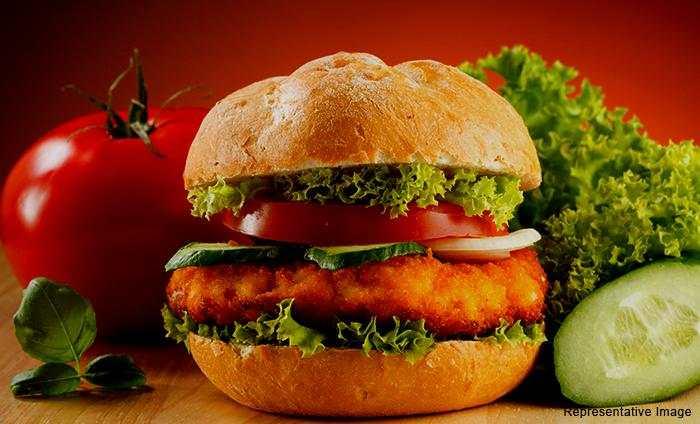 Burger Xpress : Mukherjee Nagar, Mukherjee Nagar,New Delhi cover pic
